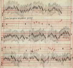 Il manoscritto Faenza 117